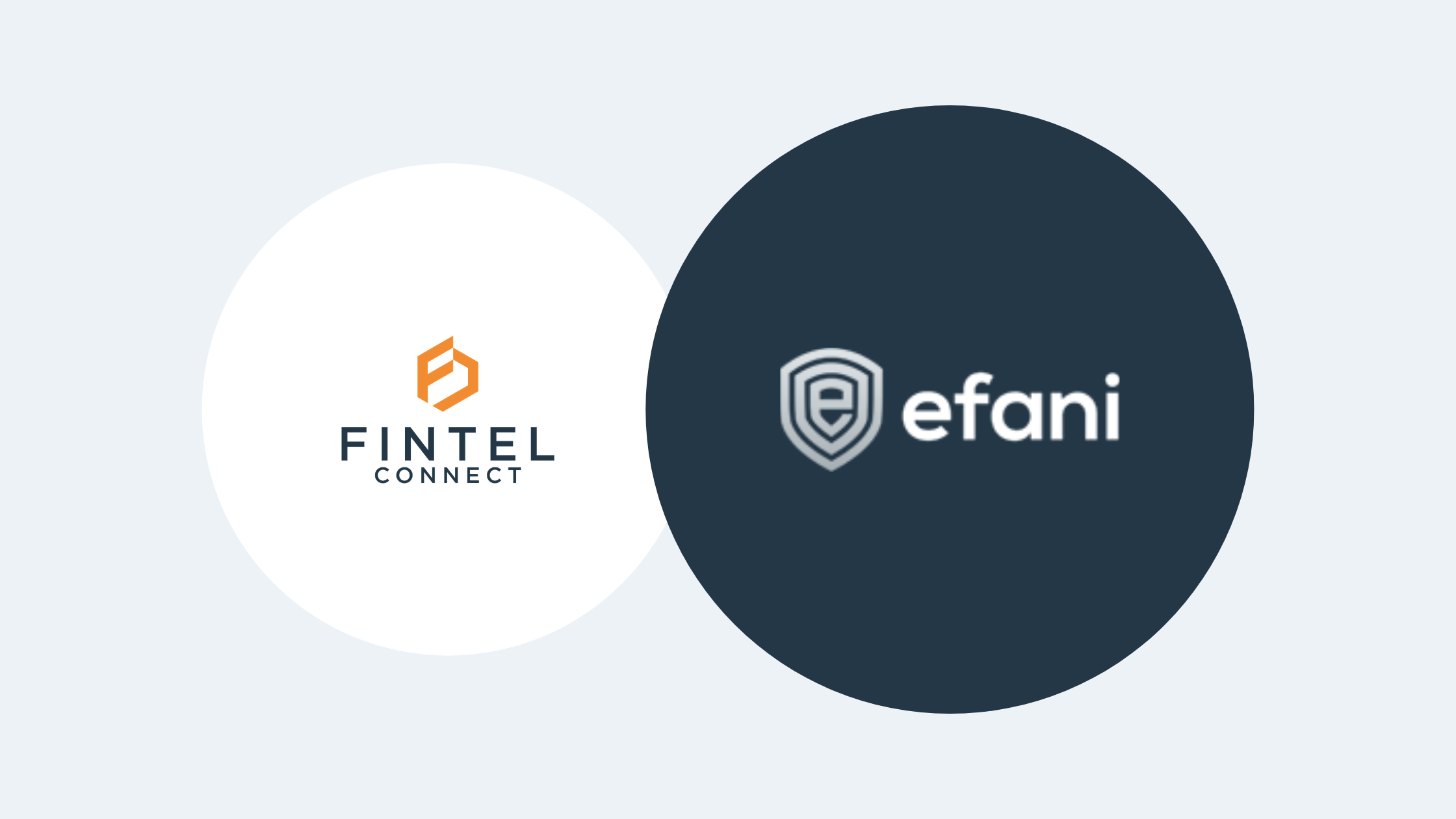 Efani Launches New Affiliate Program with Fintel Connect